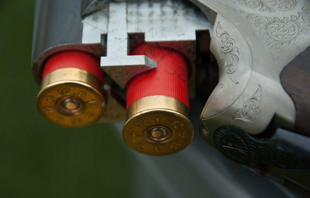 gun, canon, cartridges